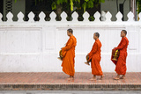 Buddhist Novice Monks Line Up to Receive Alms (Tak Bat) at Dawn, Luang Prabang Photographic Print by Jason Langley