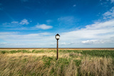Bird Hut, Horseshoe Point, Lincolnshire, England, United Kingdom, Europe Photographic Print by Bill Ward