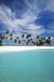 Palm Trees and Tropical Beach, Maldives, Indian Ocean, Asia Photographic Print by Sakis Papadopoulos