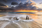 The Waves and Caribbean Sunset Frames Tree Trunks on Ffryes Beach, Antigua, Antigua and Barbuda Photographic Print by Roberto Moiola