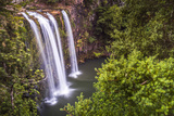 Whangarei Falls, a Popular Waterfall in the Northlands Region of North Island, New Zealand, Pacific Photographic Print by Matthew Williams-Ellis