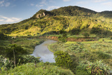 Namorona River, Ranomafana National Park, Madagascar Central Highlands, Madagascar, Africa Photographic Print by Matthew Williams-Ellis