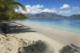 Palm Trees Providing Shade Along a Deserted Sandy Beach in the Seychelles, Indian Ocean, Africa Photographic Print by Garry Ridsdale