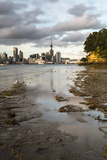 Auckland Skyline Seen across the Harbour from Bayswater, Auckland, North Island Photographic Print by Matthew Williams-Ellis