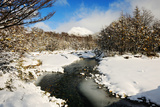 River, Snow, Patagonia, Argentina, South America Photographic Print by Pablo Cersosimo