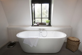 Freestanding Bath in Modern Bathroom Photo by Ton Kinsbergen