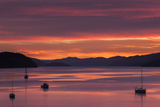 Dawn over the Calm Waters of Queen Charlotte Sound, South Island, New Zealand, Pacific Photographic Print by Garry Ridsdale