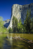 Half Dome from the Merced River, Yosemite National Park, UNESCO World Heritage Site Photographic Print by Garry Ridsdale
