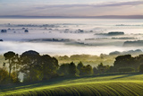 Rolling Fields Extend from Eddisbury Hill to Landscape with Autumn Mist Lying on Cheshire Plain Photographic Print by Garry Ridsdale