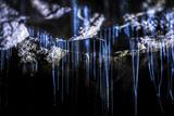 Glow Worms in Waitomo Caves, Waikato Region, North Island, New Zealand, Pacific Photographic Print by Matthew Williams-Ellis