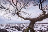 Twistleton Scar End in Snow, Ingleton, Yorkshire Dales, Yorkshire, England, United Kingdom, Europe Photographic Print by Bill Ward