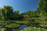 Monet's House Behind the Waterlily Pond, Giverny, Normandy, France, Europe Photographic Print by James Strachan