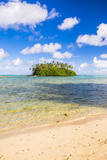 Tropical Island of Motu Taakoka Covered in Palm Trees in Muri Lagoon, Rarotonga, Cook Islands Photographic Print by Matthew Williams-Ellis