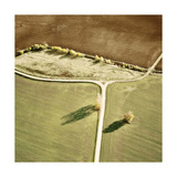 Port 106 Project - Tinted Landscape 9 *Exclusive* Umění