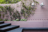 Patio Garden at Basement Level Showing a Raised Bed Planted with Brunnera London Photo by Pedro Silmon
