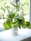 Flowers on Windowsill, Cottage Interior, UK Photo by Stuart Cox