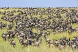 Kenya, Narok County Photographic Print by Nigel Pavitt