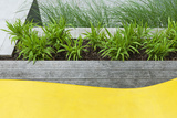 Grasses and Perennial Plants in Wooden Planter in Modern Garden with Detail of Plastic Seating Photo by Pedro Silmon