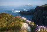 Coastal Cliffs, Godrevy Point, Nr St Ives, Cornwall, England Fotografisk tryk af Paul Harris
