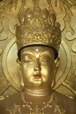 North Korea, Kaesong. a Gold Buddha at Ryongtong Temple. Founded by Chontae Buddhist Sect in 1027 Photographic Print by Katie Garrod