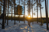 Arctic Circle, Lapland, Scandinavia, Sweden, the Tree Hotel, the Mirror Cube Room Photographic Print by Christian Kober