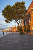 Facade Detail of the 5 Star Hotel Cipriani, at Sunset, Giudecca, Venice, Veneto, Italy. Photographic Print by Cahir Davitt
