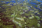 Brazil, Pantanal, Mato Grosso Do Sul. an Aerial View of a Section of the Pantanal Photographic Print by Nigel Pavitt