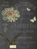 Vintage Botanical - Scabious Giclee Print by Stephanie Monahan