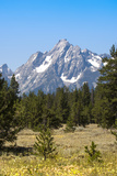 Grand Teton National Park, Teton County, Wyoming, Usa Photographic Print by John Warburton-lee