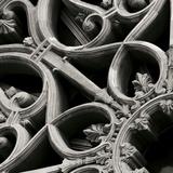 Ornamental Giclee Print by Tony Koukos