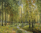 Into the Woods Giclee Print by Mark Chandon