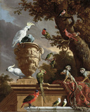 The Menagerie, c.1690 Giclee Print by Melchior d'Hondecoeter