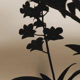 Fleurs exotiquesII Reproduction procédé giclée par Tony Koukos
