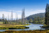 Yellowstone River, Yellowstone National Park, Wyoming, Usa Photographic Print by John Warburton-lee