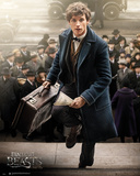 Fantastic Beasts- Newt Scaramander Affiches