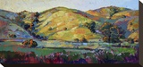 California Greens Stretched Canvas Print by Erin Hanson