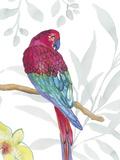 Vibrant Parrot Arte di Sandra Jacobs