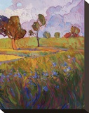 Colors of Brenham (right) Stretched Canvas Print by Erin Hanson