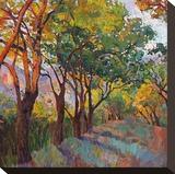 Lane of Oaks Impressão em tela esticada por Erin Hanson