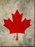Canada Flag Stretched Canvas Print by  Wonderful Dream