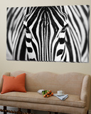Zebra Posters by Hesham Alhumaid