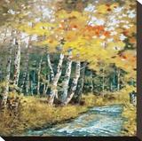 Wellspring 2 Leinwand von Carolyn Reynolds