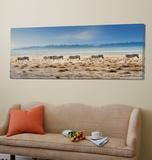 Promenade Prints by Piet Flour