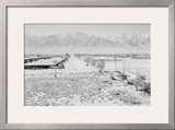 Manzanar from Guard Tower, View West (Sierra Nevada in Background), Poster by Ansel Adams