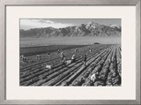 Farm, Farm Workers, Mt. Williamson in Background Prints by Ansel Adams