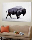 The American Bison Affiches par Davies Babies