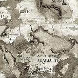 La Mappa II Photographic Print by Alan Blaustein