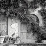 Tuscany VI Photographic Print by Alan Blaustein