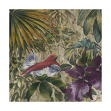 King Bird of Paradise Giclee Print by Bill Jackson