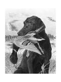Man's Best Friend Giclee Print by Chuck Black